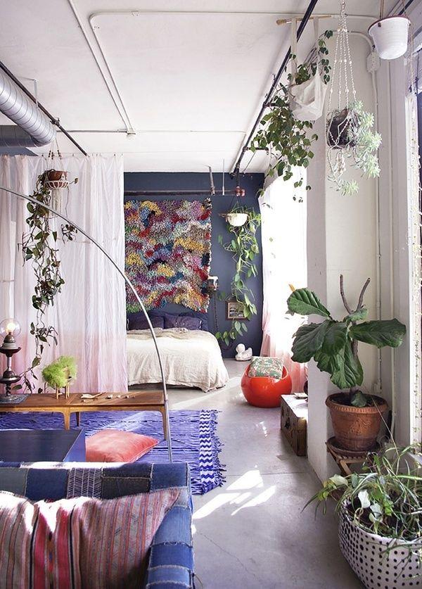 النباتات في المنزل
